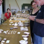 Lithic analysts (Curtis Runnels and Eleni Panagopoulou) discuss the artifacts with a geologist (Floyd McCoy).